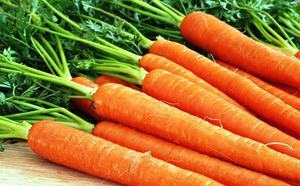 Морковь для удаления камней в почках