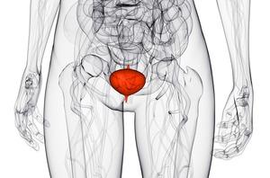 Воспаление мочевого пузыря: особенности болезни у женщин