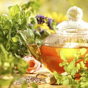 Травяной сбор для лечения почек