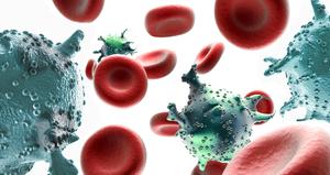 Возбудителями геморрагического цистита являются различные бактерии