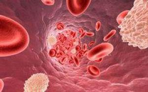 Плазмаферез – что это за процедура и когда она необходима