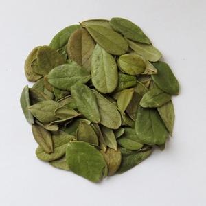 Сушенный лист брусники используют для приготовления настоев, чаев, отваров