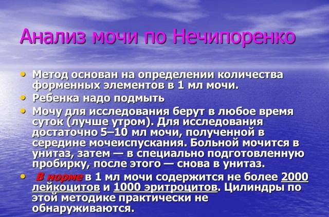 Как собирать анализ мочи по Нечипоренко и что он показывает?