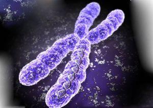 нарушение в генах