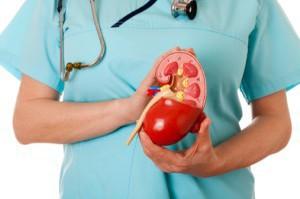 Заболевания почек – обратите внимание на симптомы
